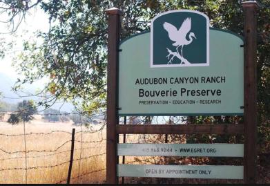 Bouverie Sign