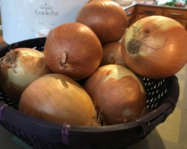 Onions and C Pot