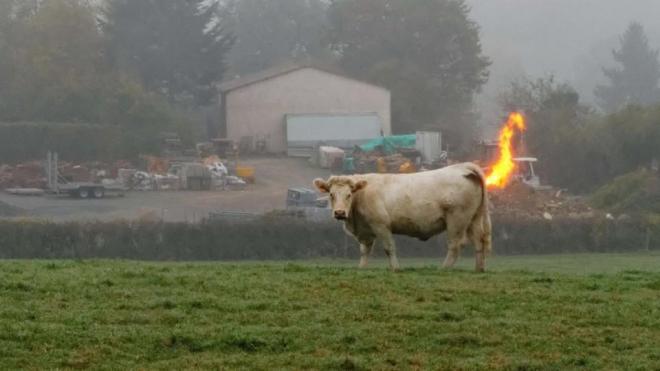 methane blaze