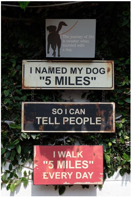 Janes 5 mile dog walk sign
