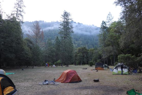 Camp tents and mist