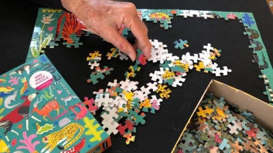 crossword puzzle cnn